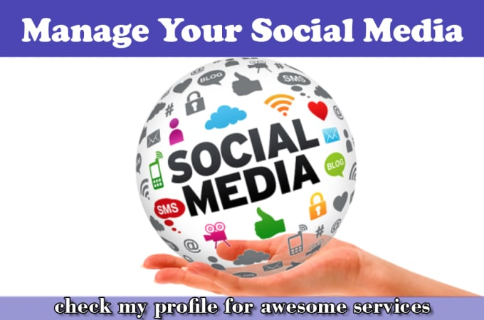 saleemwebs - fiverr - I Will Manage Your Social Media Accounts